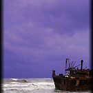 Maheno wreck on Fraser Island by Vaughan Whitworth