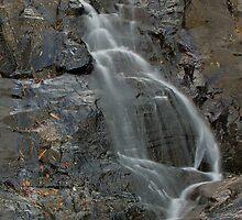 Cedar Creek Falls - 2009 by Ian Colley