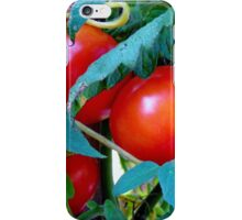 Ripe Red Tomatoes iPhone Case/Skin