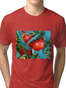 Ripe Red Tomatoes Tri-blend T-Shirt