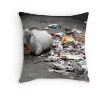 Ante Natal diet Throw Pillow