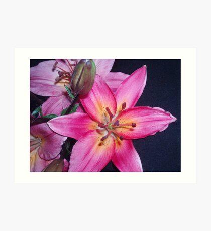 A flower for Blanchot  Art Print