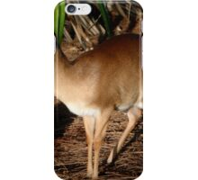 Funky Suni iPhone Case/Skin