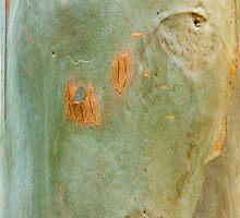 Disfigured by Werner Padarin