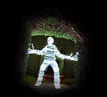Light Mummy at the grave yard by dajoolzcat