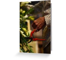 A life with flowers ... Greeting Card