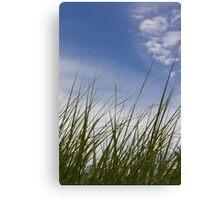 Grass, Clouds, Wind (Vertica) Canvas Print