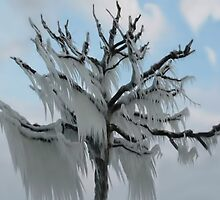 TREE COVERED IN ICE DURING A WINTER STORM-PILLOWS-TOTE BAG-TEE SHIRT- CARD- PICTURE ECT... by ✿✿ Bonita ✿✿ ђєℓℓσ