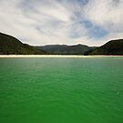 Abel Tasman Nat. Park - New Zealand by darylbowen