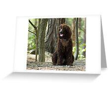 Barney Greeting Card