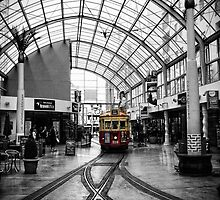 Trams : New Zealand by webgrrl
