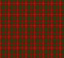 00058 Cameron Clan/Family Tartan  by Detnecs2013