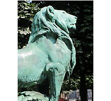 Luxembourg Lion Photographic Print