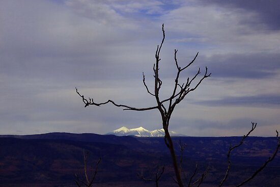 View from Jerome by Charmiene Maxwell-batten