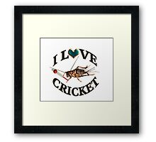 FOR THE LOVE OF THE SPORT & GAME OF CRICKET..FUN PICTURE OF A CRICKET PLAYING THE GAME CRICKET LOL...TEE SHIRTS,PILLOWS,TOTE BAGS,SCARF,CELL PHONE COVERS ECT.. Framed Print