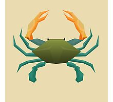 Blue Crab Photographic Print