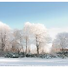 Scotland in Winter by Andrew Littlejohn