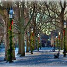 New Year's Eve at Salem Common by Monica M. Scanlan