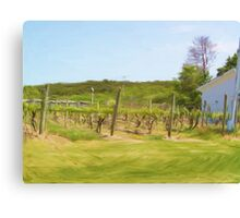 An Afternoon in the Vineyard Canvas Print