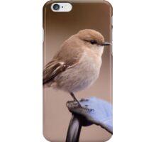 Dusky Robin iPhone Case/Skin