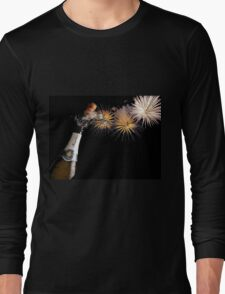 Champagne And Fireworks Celebration Long Sleeve T-Shirt