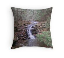 Lazy Water Fall II Throw Pillow