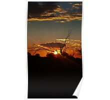 Sunset Golden Outback Poster