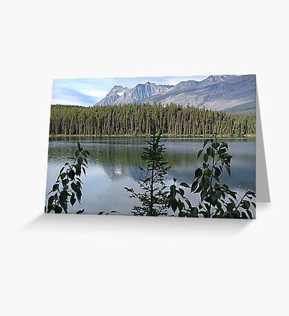 One Lake Too Many Greeting Card