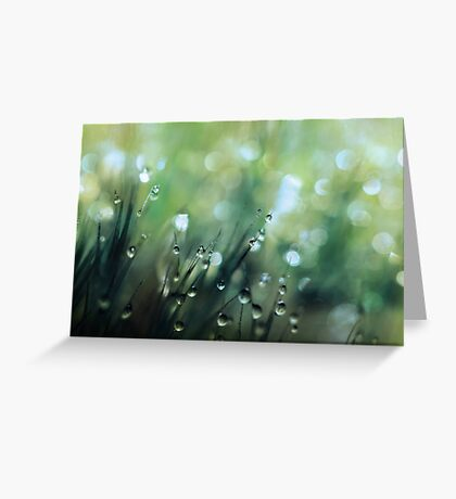 Moss Drops Greeting Card