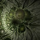 Fractal Moss by Ann Garrett