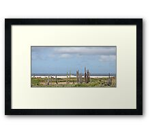 Bonaire Coast with Donkeys Framed Print