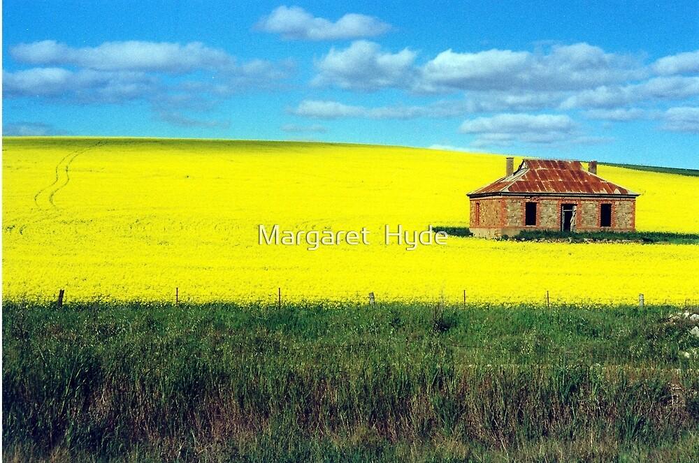 derelict house in canola fields, Burra 2 by Margaret  Hyde