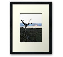 torrey sunset 2 Framed Print