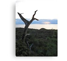 torrey sunset 2 Canvas Print