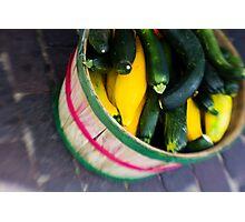 Bushel of Zucchini Photographic Print