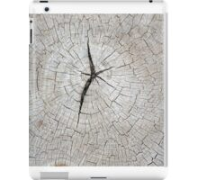 Top view of an old gray texture of a tree trunk iPad Case/Skin