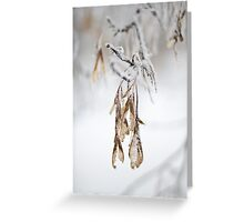 Back Yard Frost Greeting Card