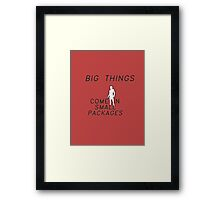 big things come in small packages: ant-man Framed Print