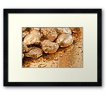 gold nuggets Framed Print