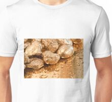 gold nuggets Unisex T-Shirt