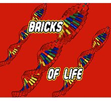 Bricks of Life Photographic Print