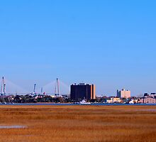 Charleston South Carolina seen from across the Salt Marsh by barnsis