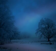 Frost & Fog at Dawn 11 by Chris Pultz