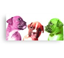 pastille pups Canvas Print
