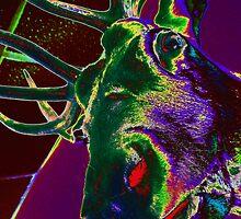 01-01-11 Wok-N-Roll's Reproachful Elk by Margaret Bryant