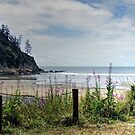 Oswald West State Park, Oregon, USA by Clark Thompson