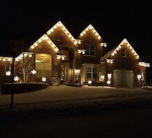 Christmas Lights by k253