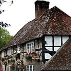 The Oldest Pub in Sussex by Malcolm Chant