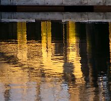 Industrial Gold by Helen K. Passey