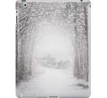 Castle in the snow iPad Case/Skin